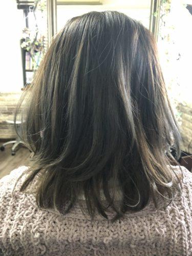 HAIR CATALOG